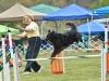 agility_20121056